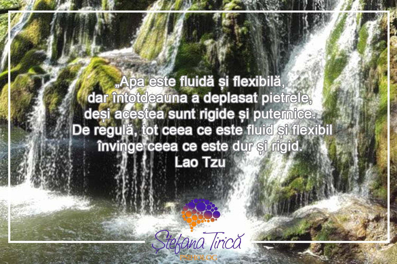 Meditaţia de tip Mindfulness- Psiholog Stefana Tirica- Psiholog Baia Mare